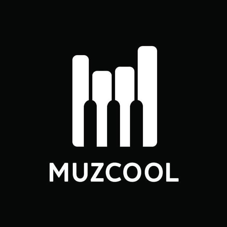 Франшиза muzcool